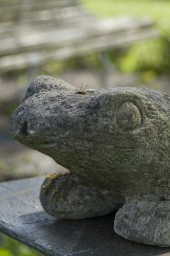 Large stone vintage Frog