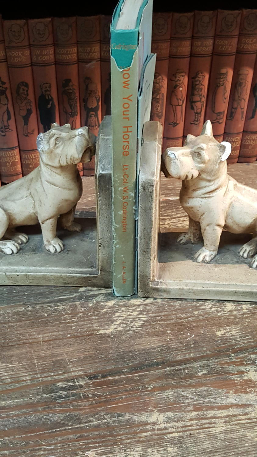 Pair of vintage Dog book ends