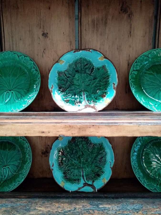 19th century Wedgwood majolica vine leaf plates