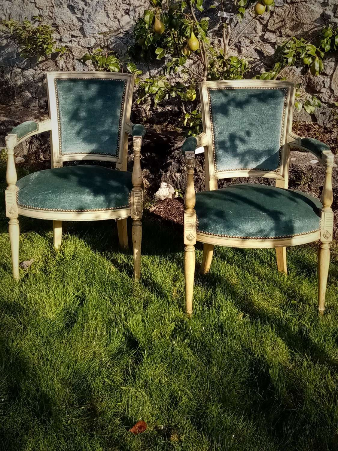 Pair of Empire style 19th c French elbow chairs
