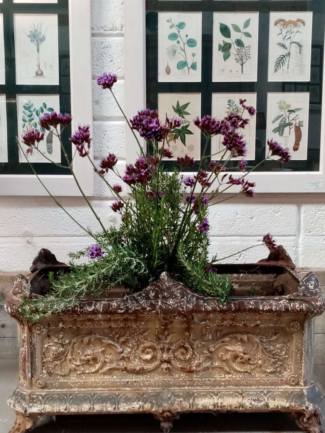 19th century cast iron French jardinere