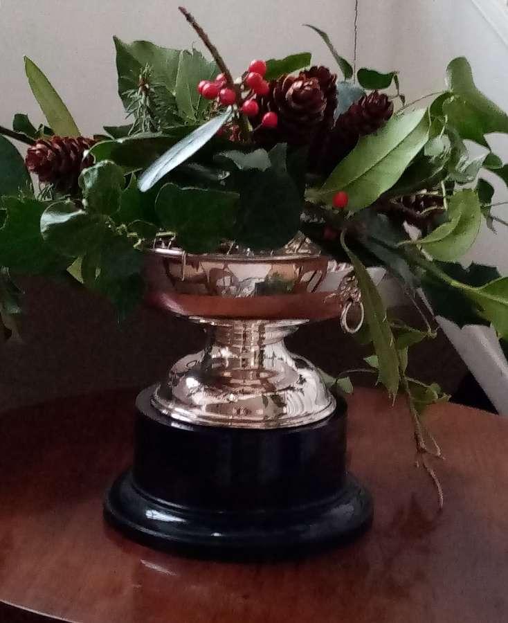 Vintage EPNS lion mask rose bowl on stand