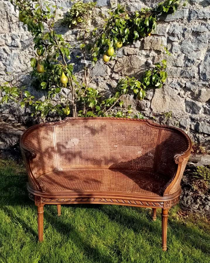 20th Century Louis XiV style caned sofa